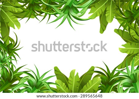 Tropical jungle. frame