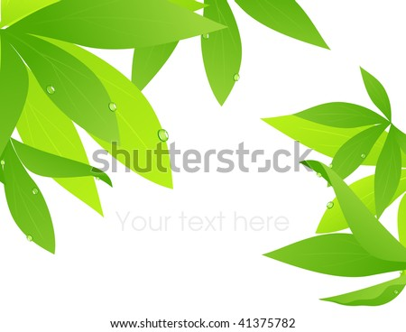 Tropical leaf branch, vector illustration - stock vector