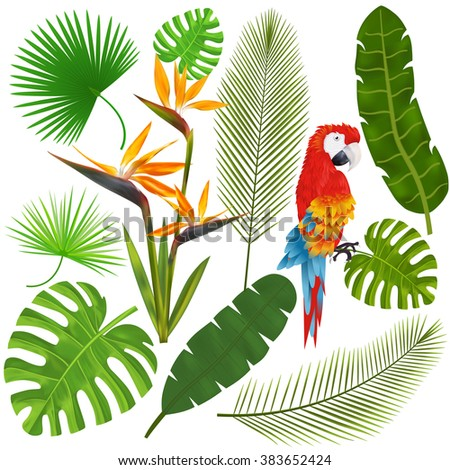 Tropical leaves, flowers and macaw vector illustration - stock vector
