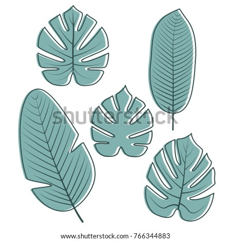 Tropical Palm, Philodendron, Banana leaves and isolated on white background. Vector illustration.