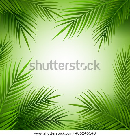 Tropical palm tree frame with copy space. Jungle leaves background.
