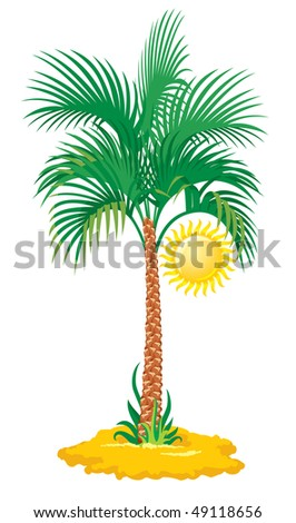 tropical palm tree isolated on white background, vector