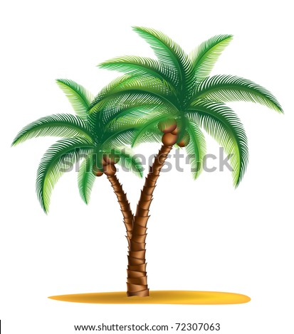 tropical palm tree standing on a small island vector