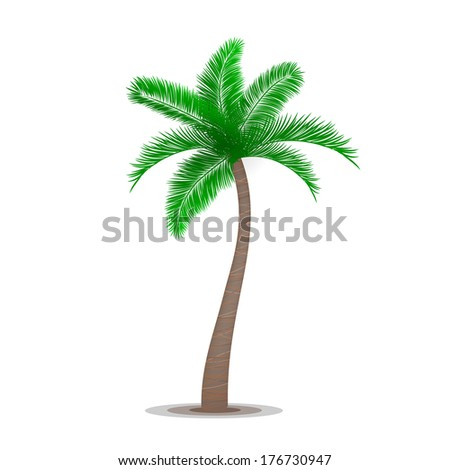 Tropical palm tree symbol isolated vector illustration