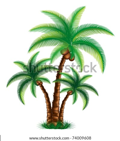 Tropical palm trees are on grass vector - stock vector