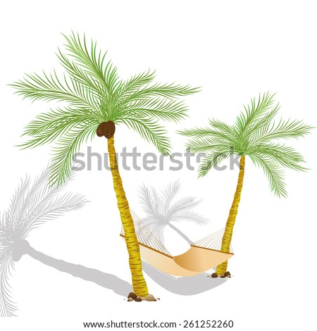 Tropical Palms Recreation