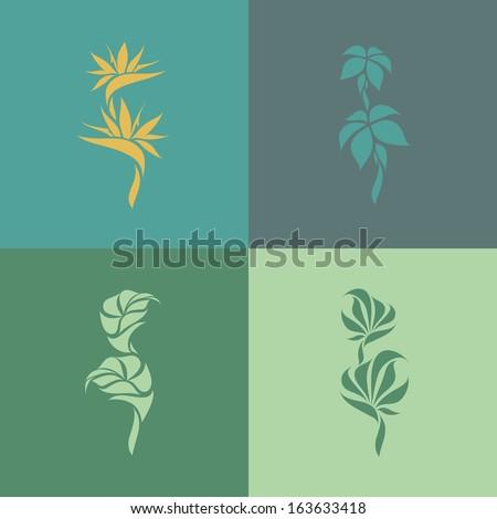 Tropical plants. Set of design elements - stock vector