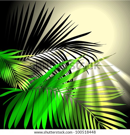 tropical plants (vector drawing nature)