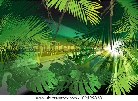 tropical scenery (tropical plants vector image) - stock vector