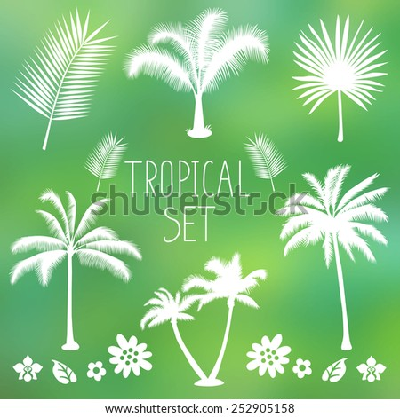 Tropical set: palm trees, flowers and foliage silhouettes isolated on blur background. Vector - stock vector