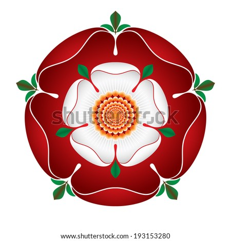 Tudor Dynasty Rose - detailed vector shaded illustration - English Symbol -  Combined the red rose of the house of Lancaster and the White rose of the house of York after the War of The Roses  - stock vector