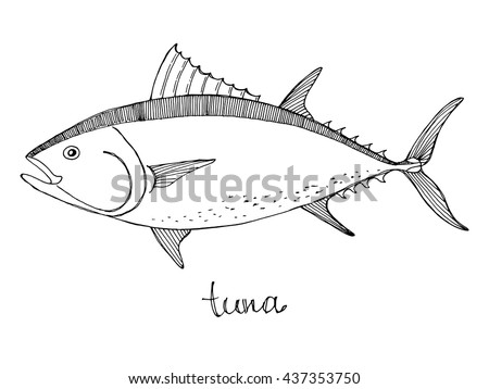 Tuna fish can design for Is tuna fish good for dogs