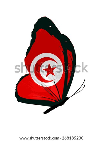 Tunisian flag butterfly - vector