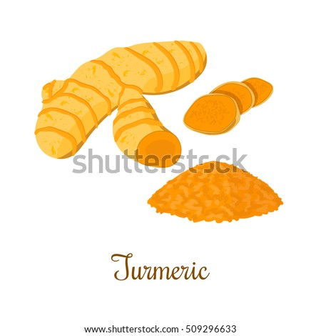 Turmeric root with powder isolated on white background. Vector illustration. Spice symbol. For food design, restaurant, store, market, health care products. Can be used as logo, price tag, label