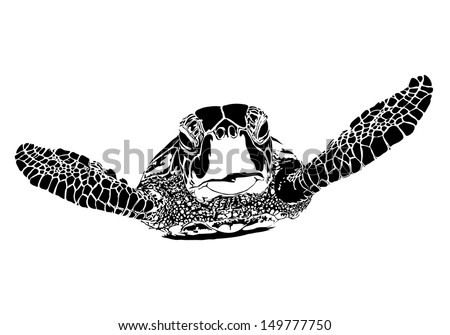 Turtle silhouette - stock vector