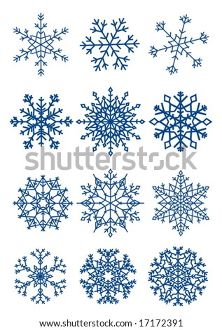 Twelve beautiful different snowflakes isolated on white - vector