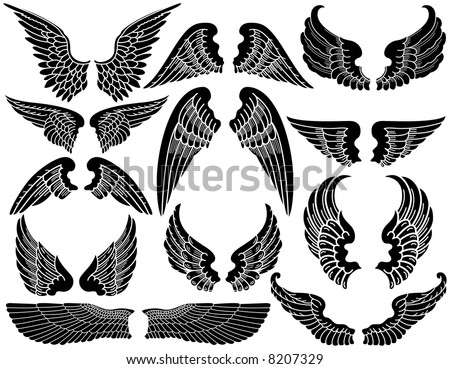 Twelve Sets of Angel Wings