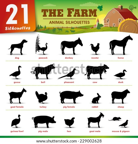 Twenty one Farm animal silhouettes - stock vector