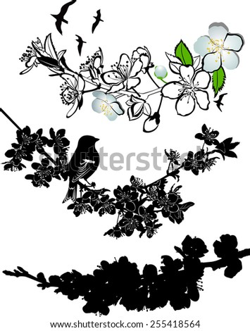 twig cherry blossoms  - stock vector