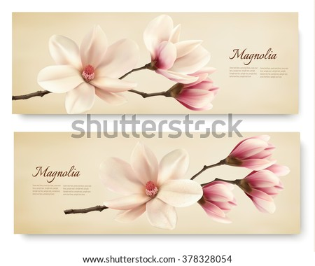 Two beautiful magnolia banners. Vector. - stock vector