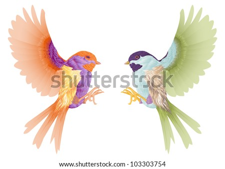 two 	birds flying isolated in white - stock vector