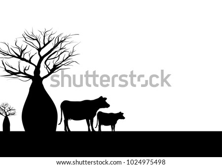 Two boab trees and cow black and white background