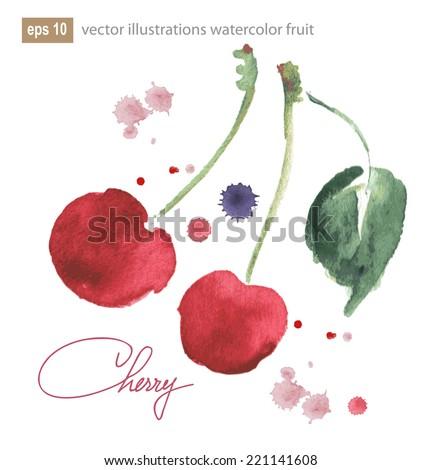 Two cherries illustration with watercolor splashes, vector image - stock vector