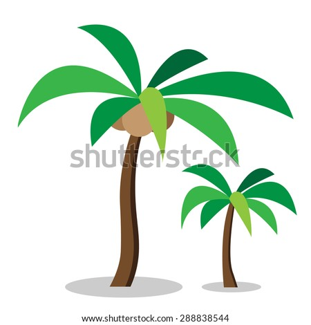 Two coconut trees with coconut and no coconut in simple flat style. - stock vector