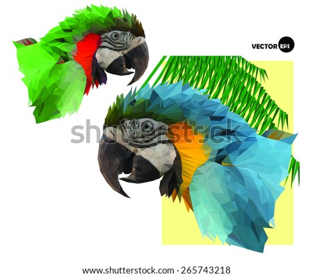 two colorful macaw parrot`s head and palm tree in low polygon style on white background, vector illustration - stock vector