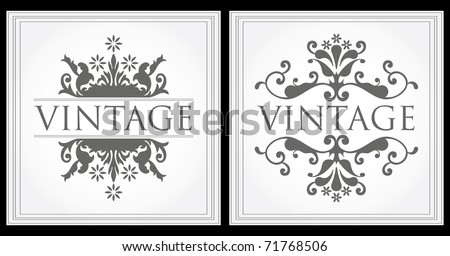 Two gray Vintage frame with space for text - stock vector
