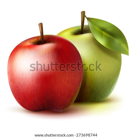 Two isolated green and red realistic vector apples - stock vector
