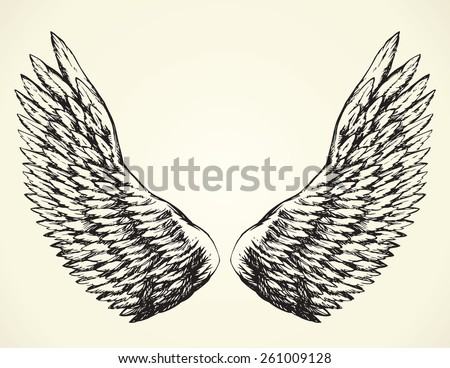 Two outspread large soft wings with long fluffy glide white plume. Vector monochrome freehand black ink drawn background sketchy in art scribble ancient style pen on paper with space for text on sky - stock vector