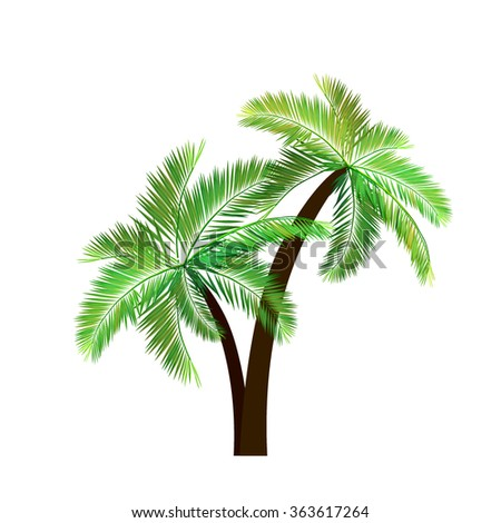 Two palm trees. Vector - stock vector