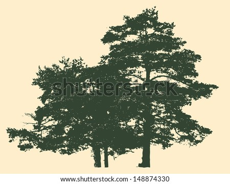 two pines silhouette. detailed vector illustration  - stock vector