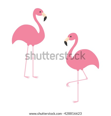 Two pink flamingo set. Exotic tropical bird. Zoo animal collection. Cute cartoon character. Decoration element. Flat design. White background. Isolated. Vector illustration