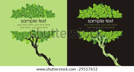 Two variants of cards design with trees and text - stock vector