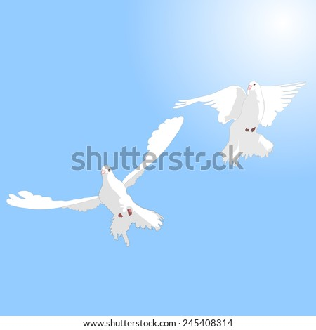 Two white doves in love against the sky.
