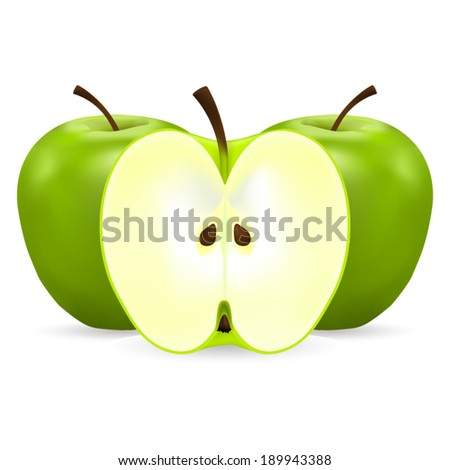 two whole and half green apples on a white background - stock vector