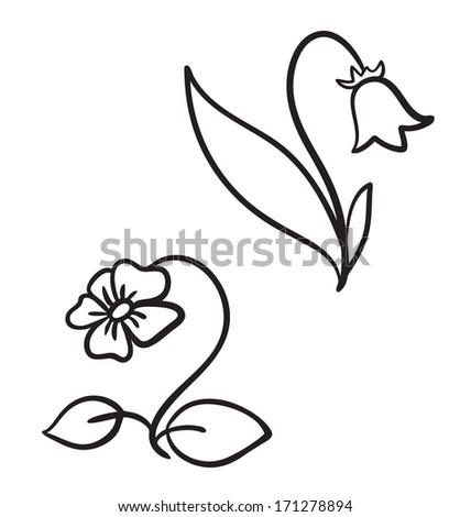 Two wild flowers. Vector illustration