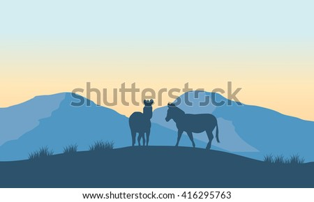 Two zebra silhouette on the mountain at the morning
