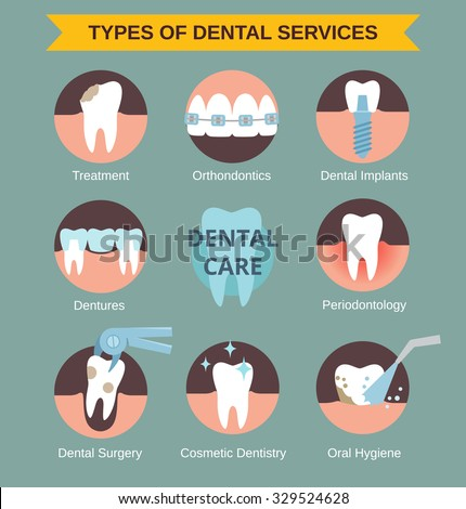 Types of dental clinic services. Vector infographic