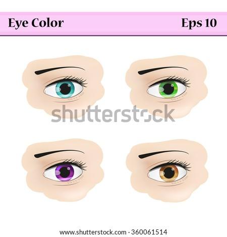 ovalshaped eyes blue green brown gray stock vector. Black Bedroom Furniture Sets. Home Design Ideas