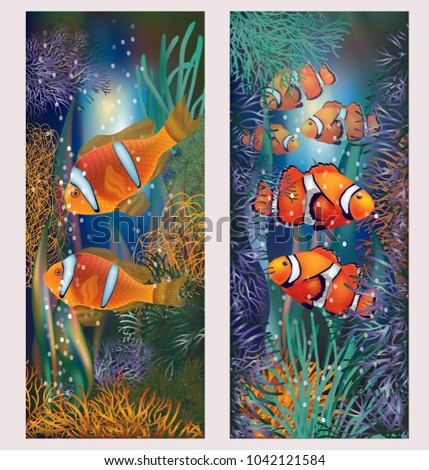 Underwater banner with clownfish, vector illustration
