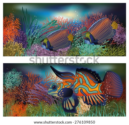 Underwater banners with tropic fish, vector illustration - stock vector