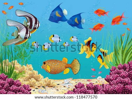 Underwater landscape with various water plants and swimming tropical fish. All objects are grouped. - stock vector