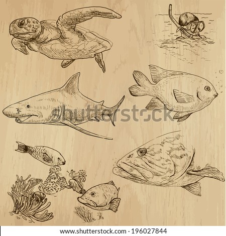 Underwater, Sea Life (vector set no.1)  - Collection of an hand drawn illustrations. Description: Each drawing comprise of two basic layers of outlines, the colored background is isolated. - stock vector