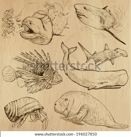 Underwater, Sea Life (vector set no.4)  - Collection of an hand drawn illustrations. Description: Each drawing comprise of two basic layers of outlines, the colored background is isolated. - stock vector