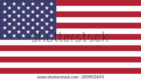 United State Of America flag in official colors, vector illustration