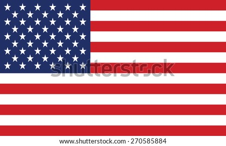 United States Flag Vector - stock vector