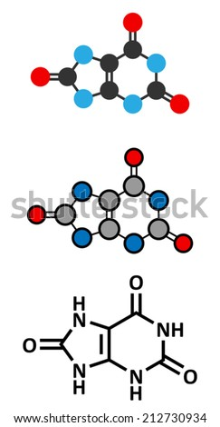 Uric acid molecule  High blood levels lead to gout disease  Stylized    Uric Acid Molecule